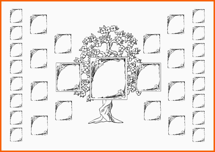 faszinieren stammbaum zeichnen vorlage  kostenlos vorlagen