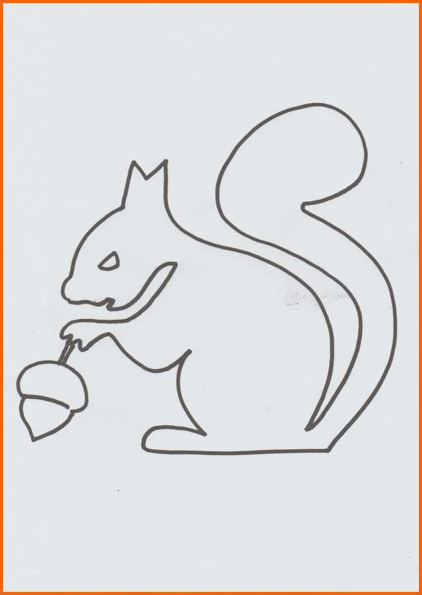 original eichhörnchen basteln vorlage einzigartig